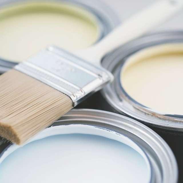 Як вибрати щітку для фарбування? - Alpina