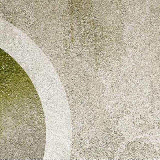 Очистка позеленевших фасадов - Краски Alpina